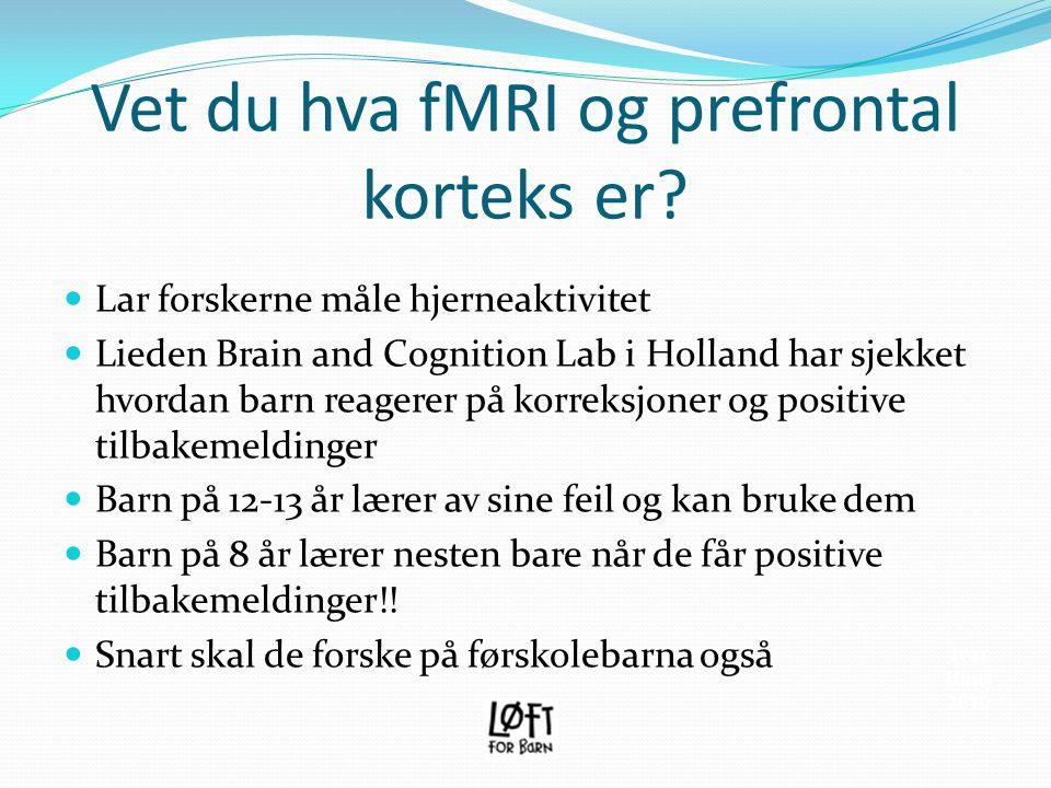 Vet du hva fMRI og prefrontal korteks er