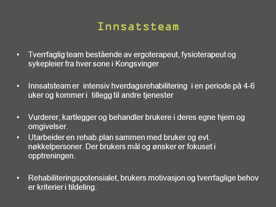 Innsatsteam Tverrfaglig team bestående av ergoterapeut, fysioterapeut og sykepleier fra hver sone i Kongsvinger.