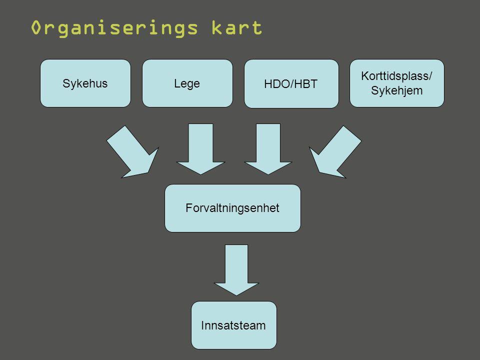 Organiserings kart Sykehus Lege HDO/HBT Korttidsplass/ Sykehjem