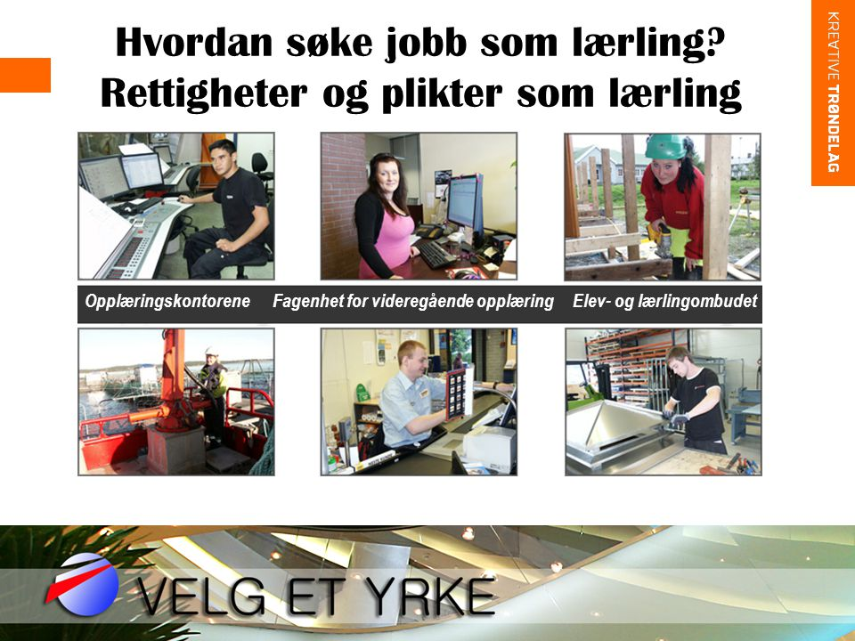 Hvordan søke jobb som lærling Rettigheter og plikter som lærling