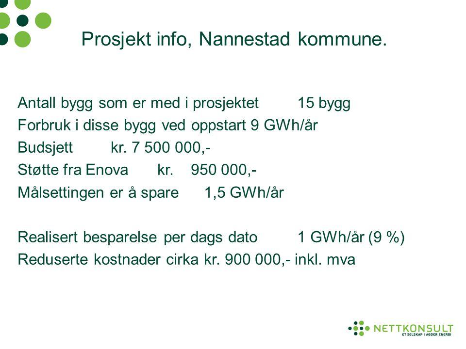 Prosjekt info, Nannestad kommune.