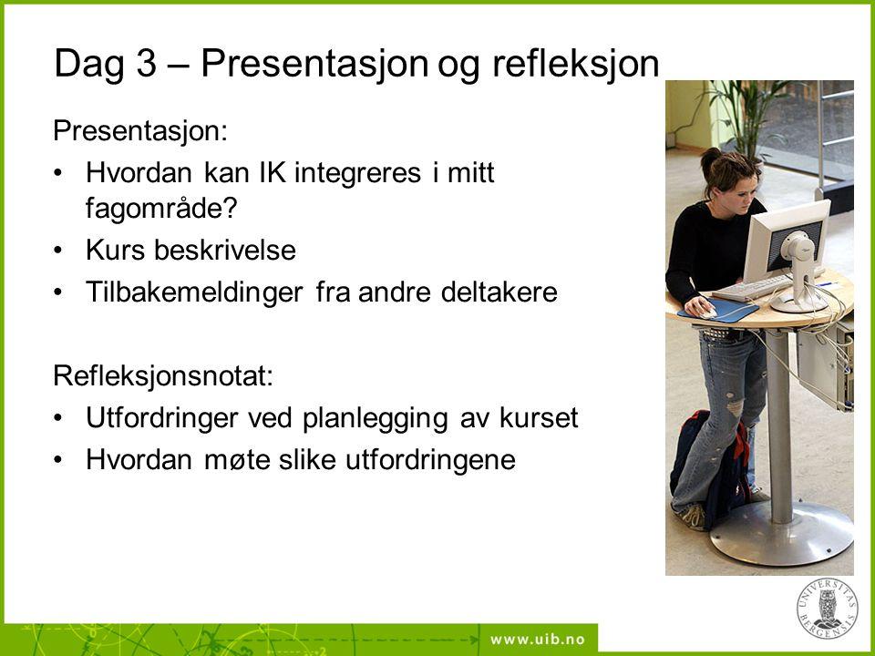 Dag 3 – Presentasjon og refleksjon