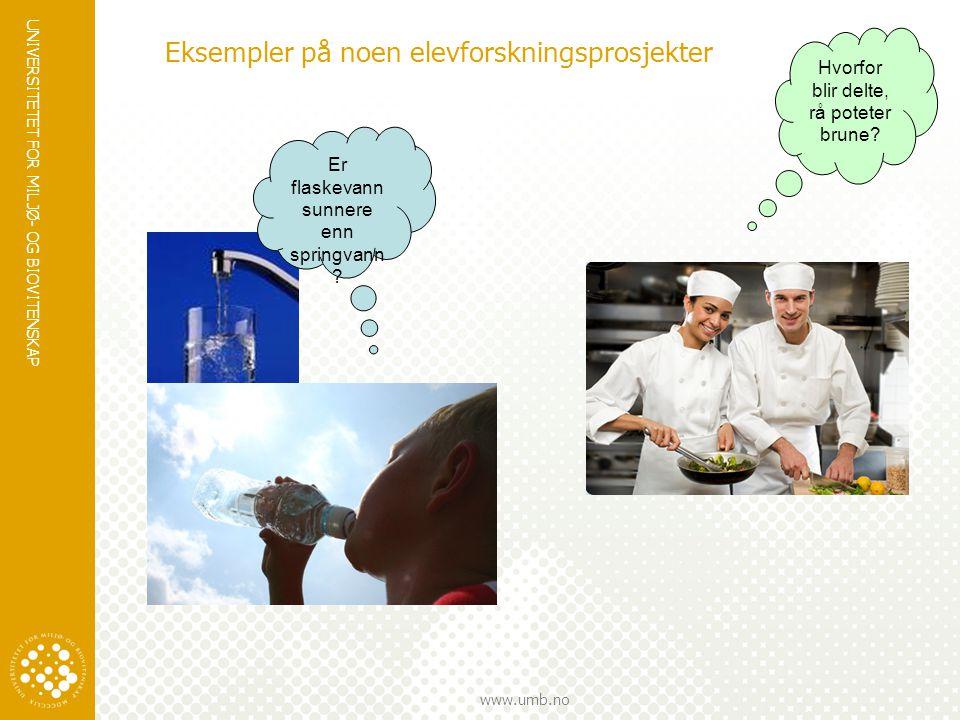 Eksempler på noen elevforskningsprosjekter
