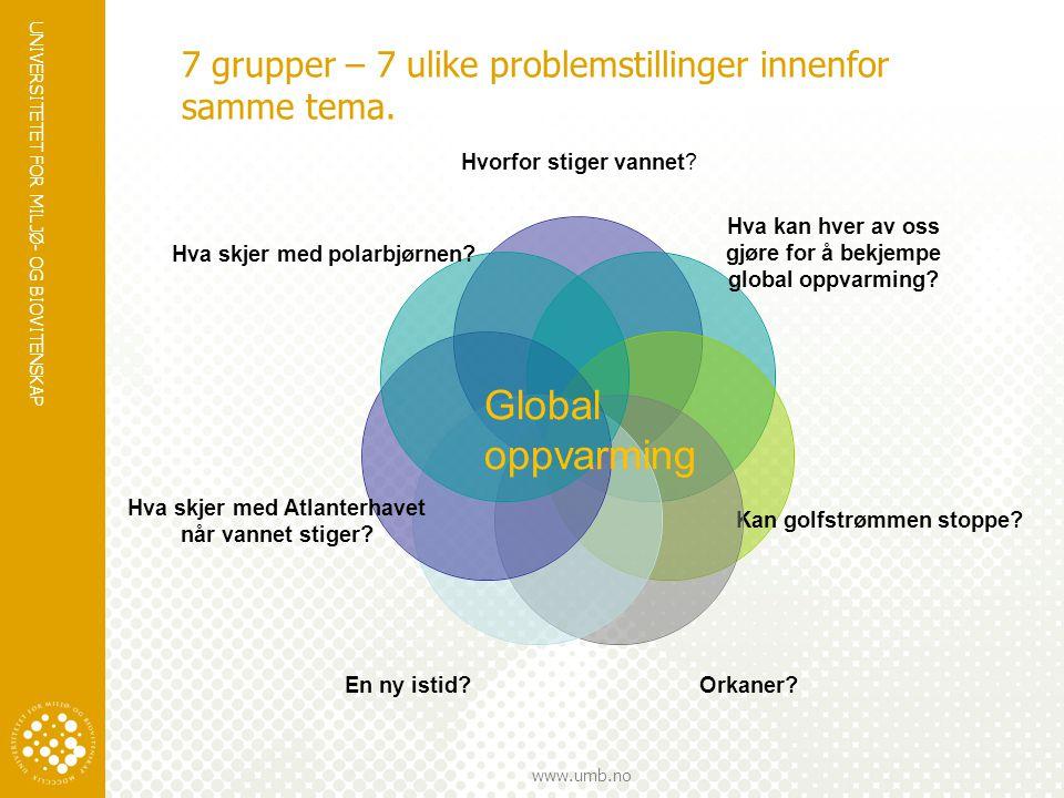 7 grupper – 7 ulike problemstillinger innenfor samme tema.