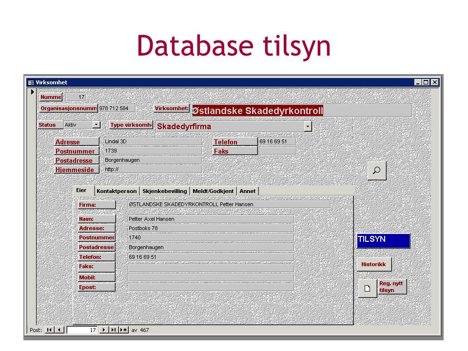 Database tilsyn