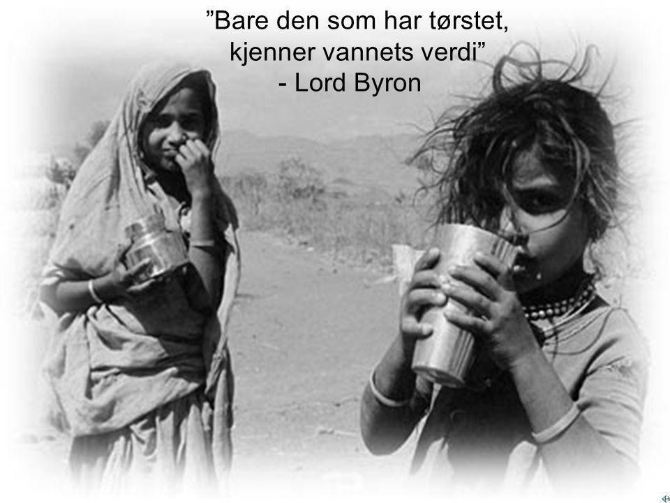 Bare den som har tørstet, kjenner vannets verdi - Lord Byron