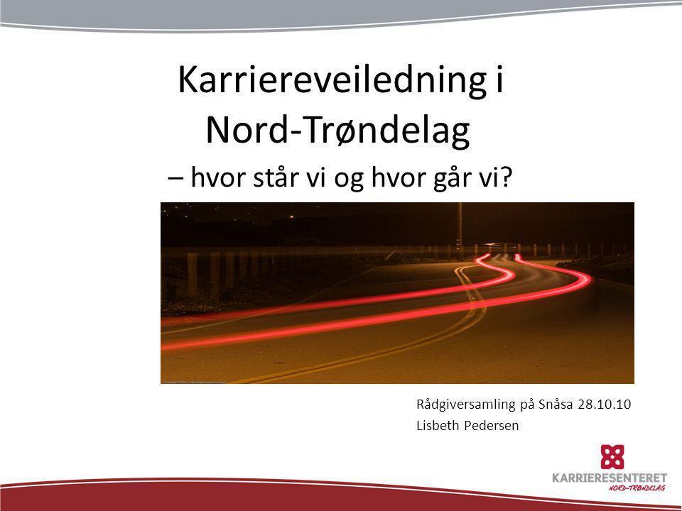 Karriereveiledning i Nord-Trøndelag