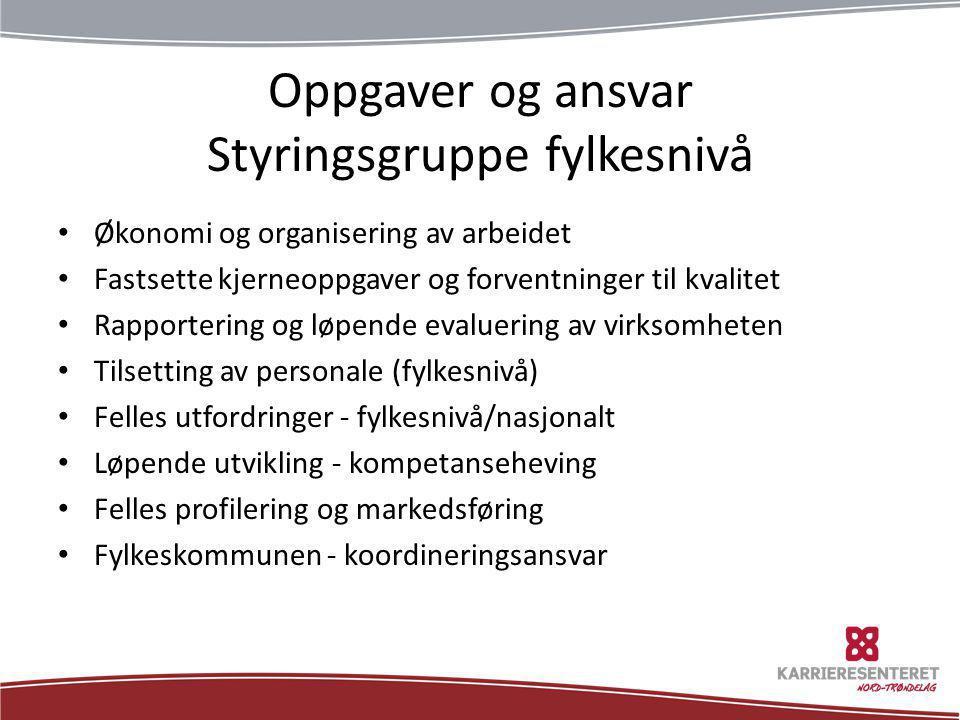 Oppgaver og ansvar Styringsgruppe fylkesnivå