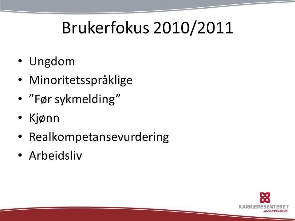 Brukerfokus 2010/2011 Ungdom Minoritetsspråklige Før sykmelding