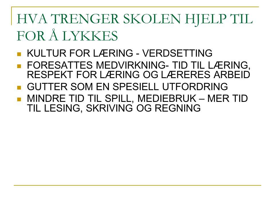HVA TRENGER SKOLEN HJELP TIL FOR Å LYKKES