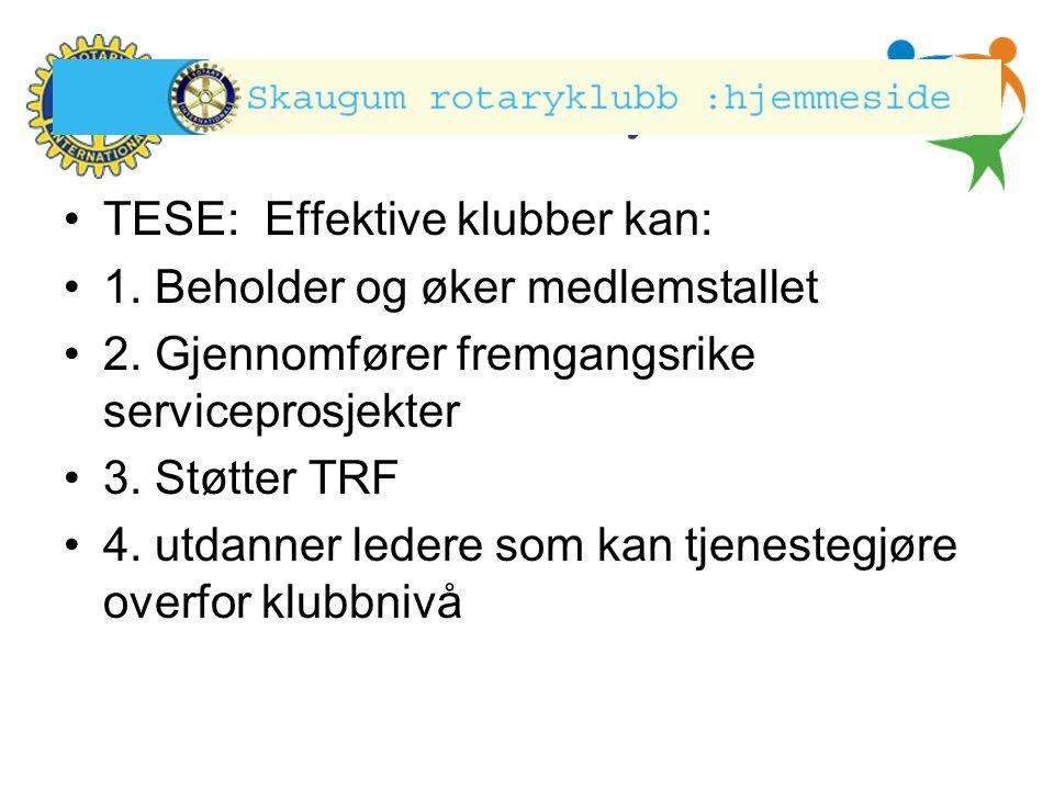 TESE: Effektive klubber kan: