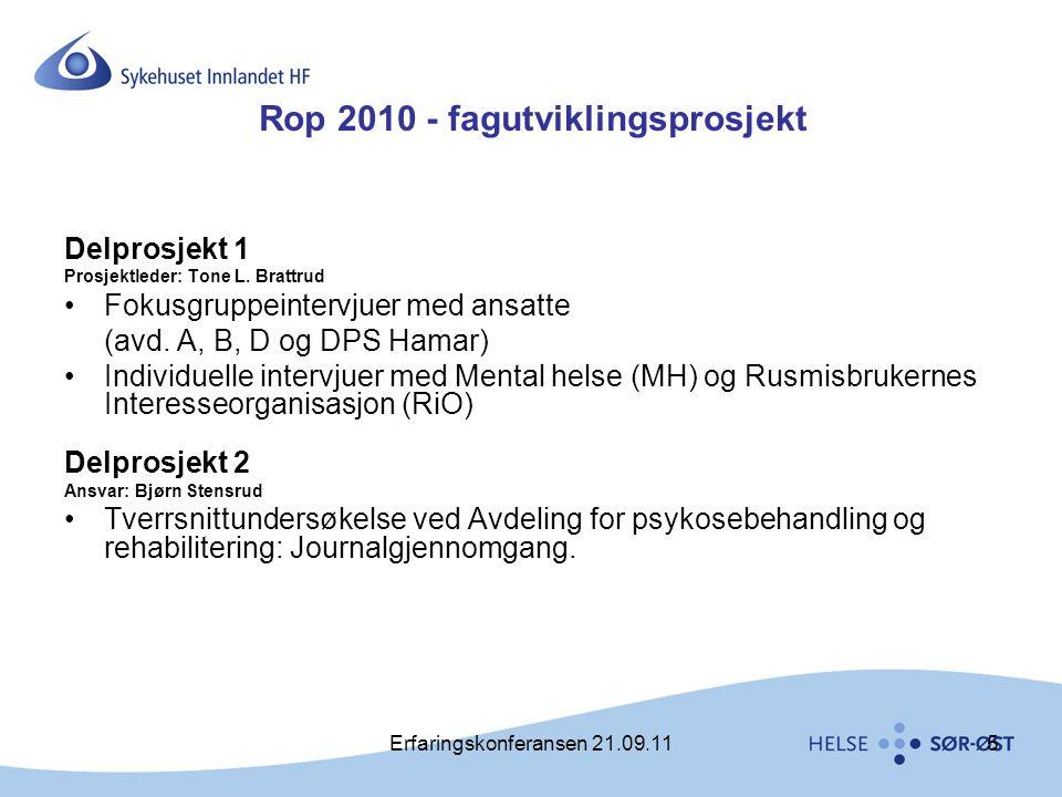 Rop 2010 - fagutviklingsprosjekt