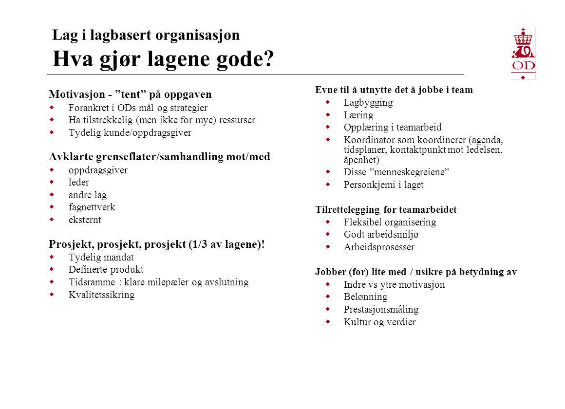 Lag i lagbasert organisasjon Hva gjør lagene gode