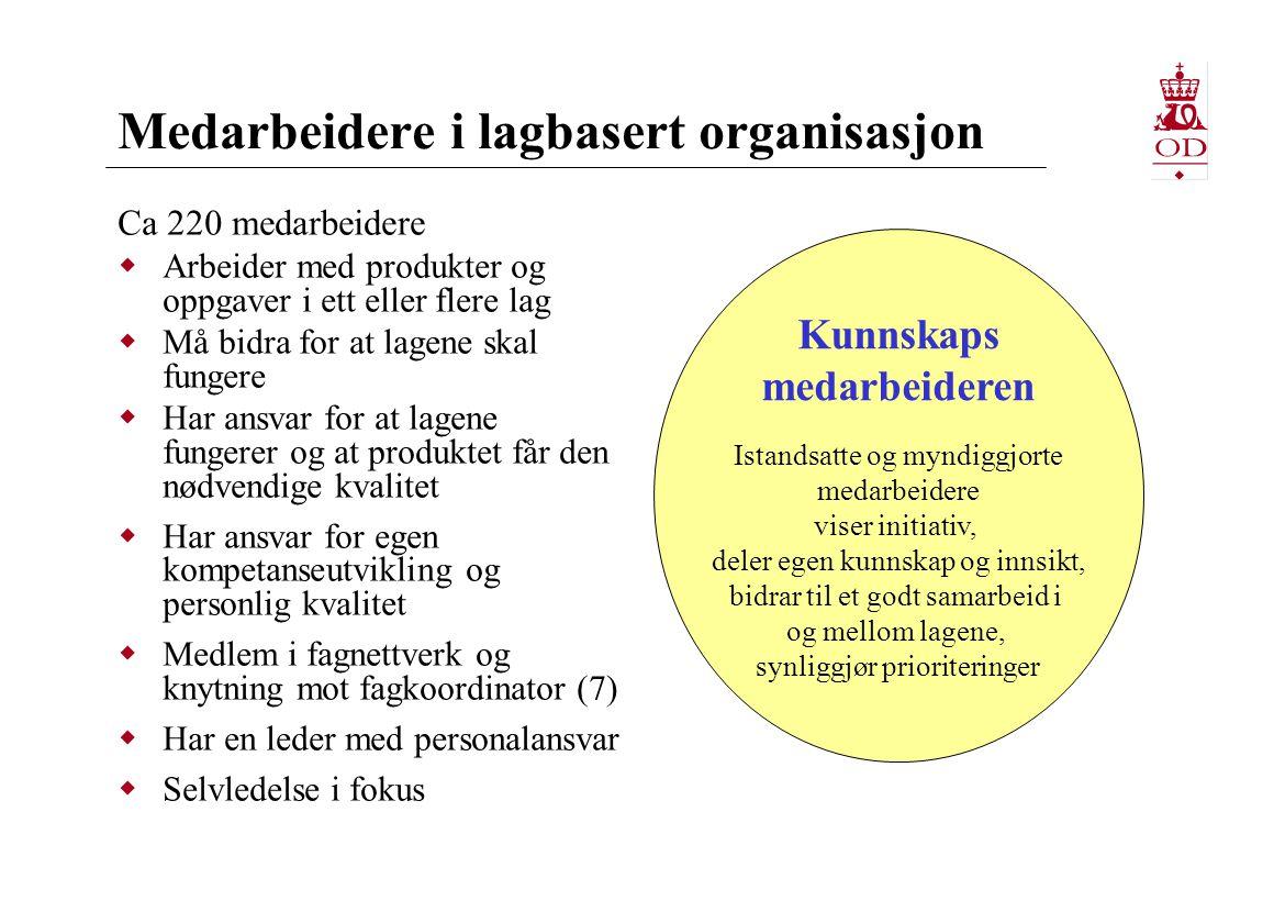 Medarbeidere i lagbasert organisasjon