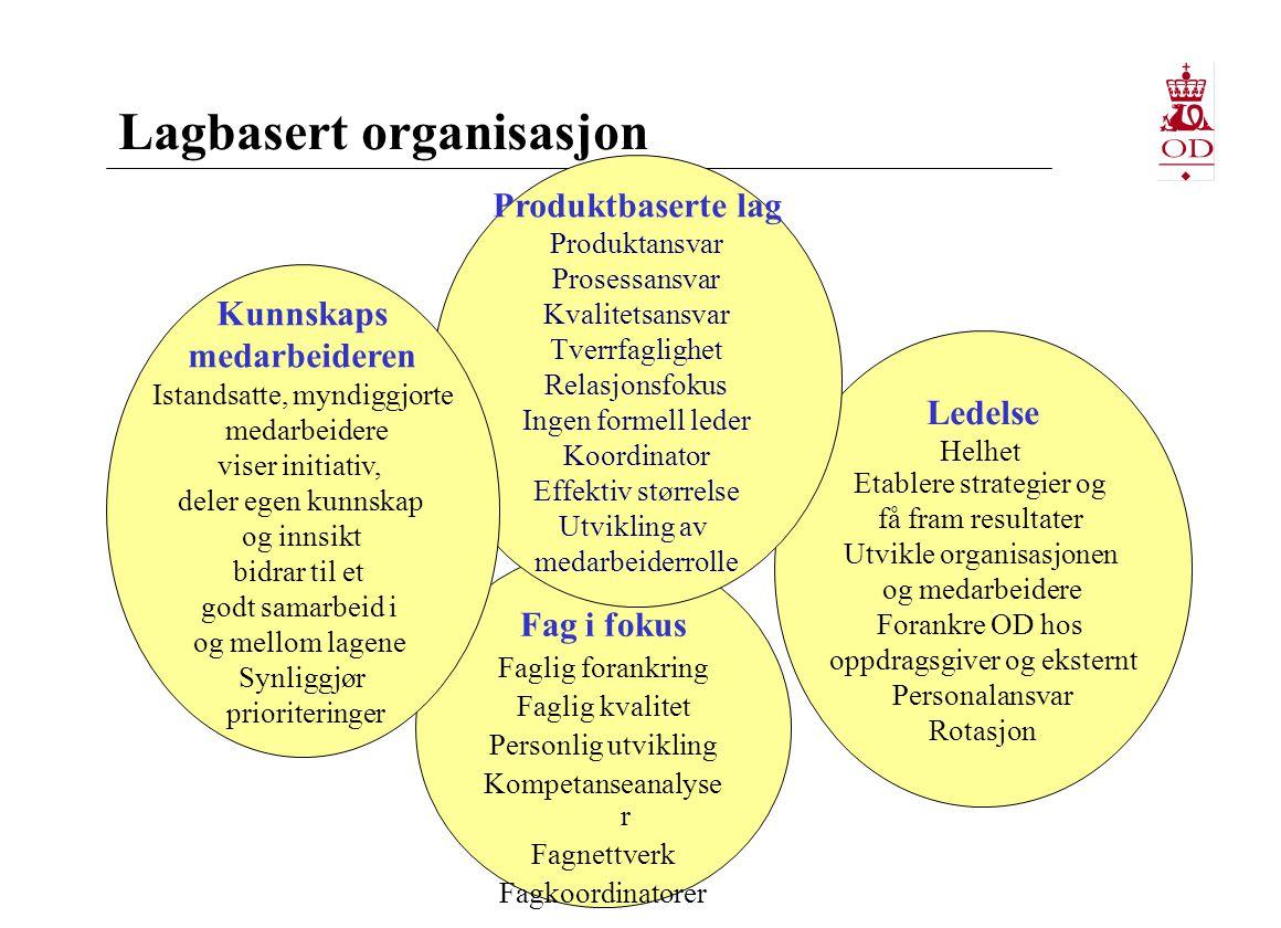Lagbasert organisasjon