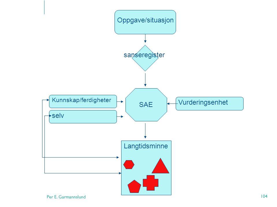 Oppgave/situasjon sanseregister Vurderingsenhet SAE selv Langtidsminne