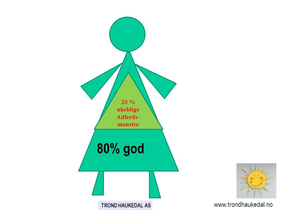 80% god 80% www.trondhaukedal.no 20 % uheldige Adferds-mønstre