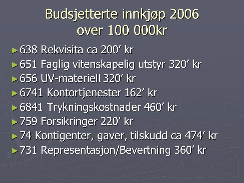 Budsjetterte innkjøp 2006 over 100 000kr