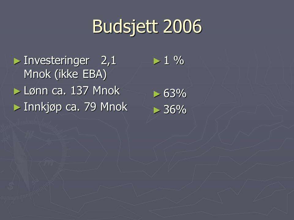Budsjett 2006 Investeringer 2,1 Mnok (ikke EBA) Lønn ca. 137 Mnok