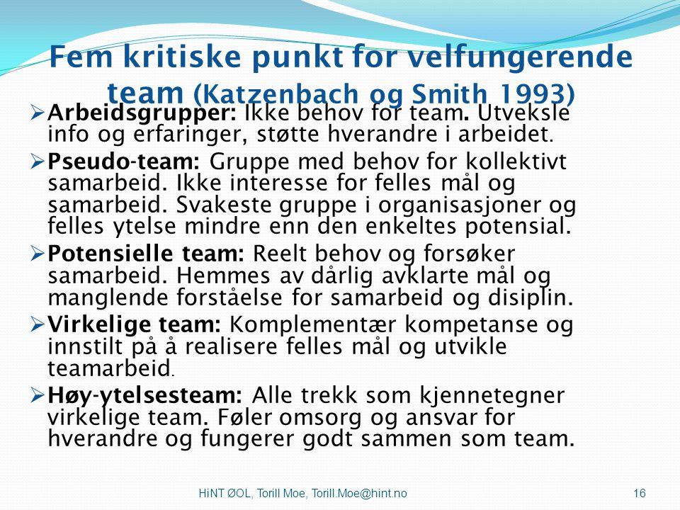 Fem kritiske punkt for velfungerende team (Katzenbach og Smith 1993)