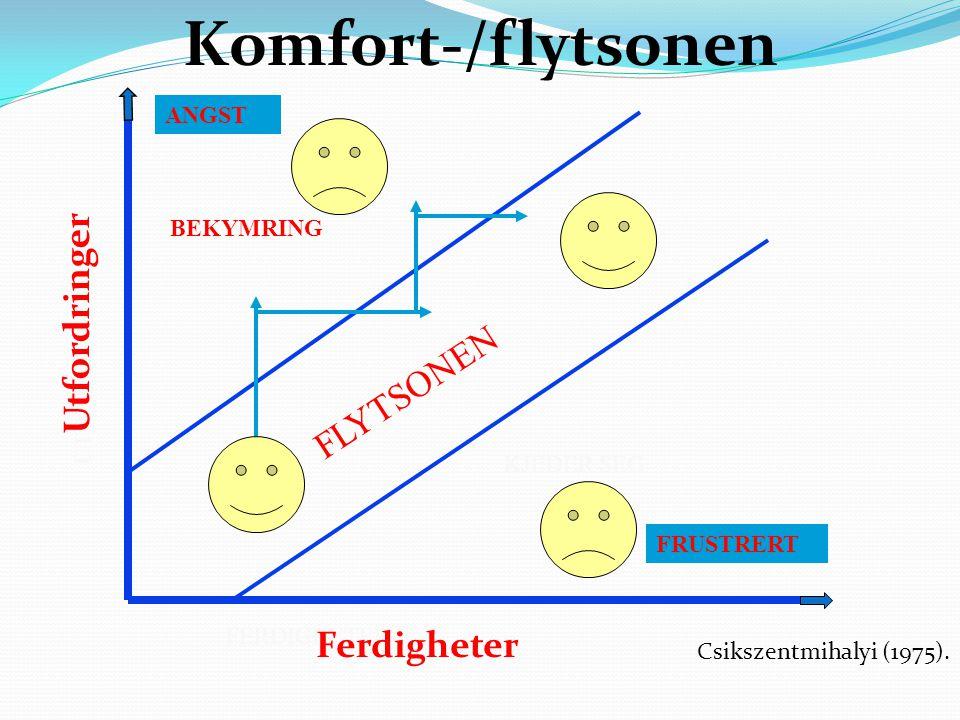 Komfort-/flytsonen Utfordringer FLYTSONEN Ferdigheter ANGST BEKYMRING