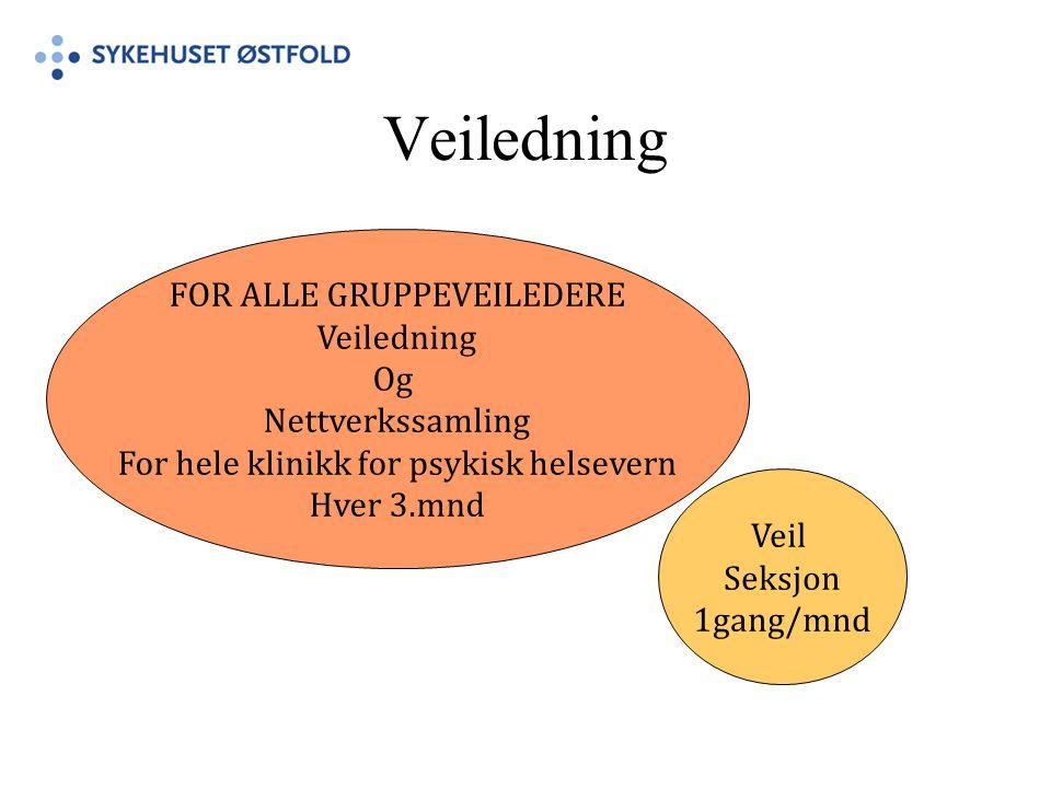 Veiledning FOR ALLE GRUPPEVEILEDERE Veiledning Og Nettverkssamling