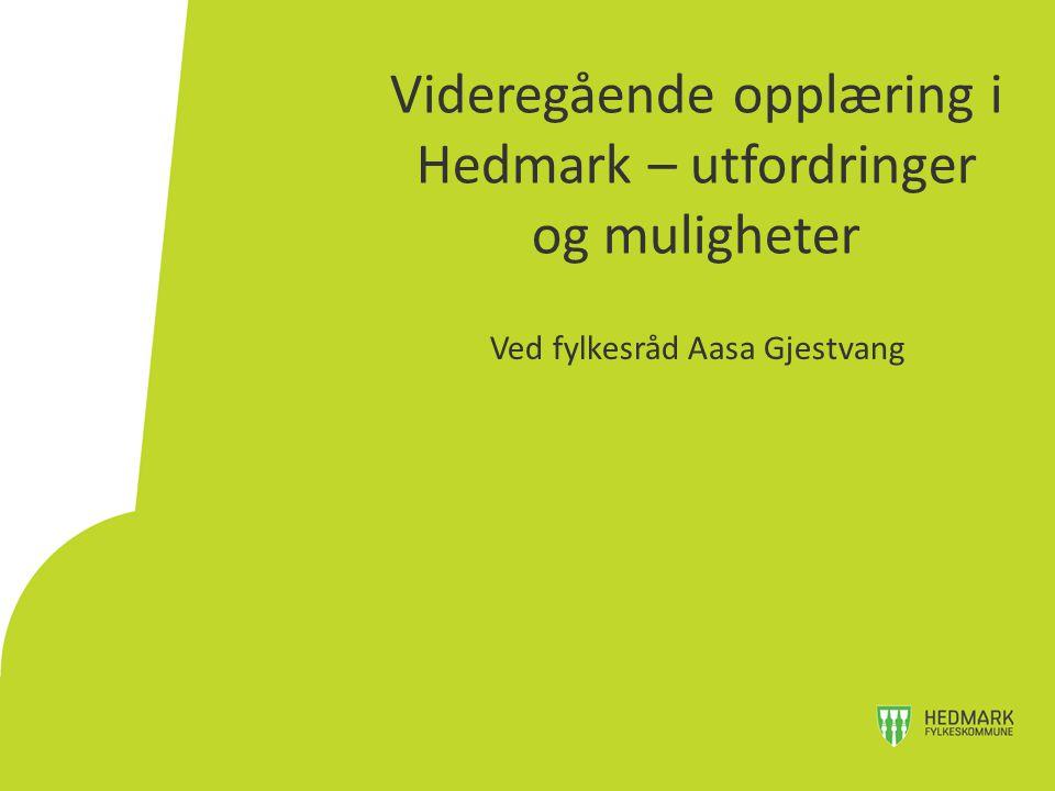 Videregående opplæring i Hedmark – utfordringer og muligheter