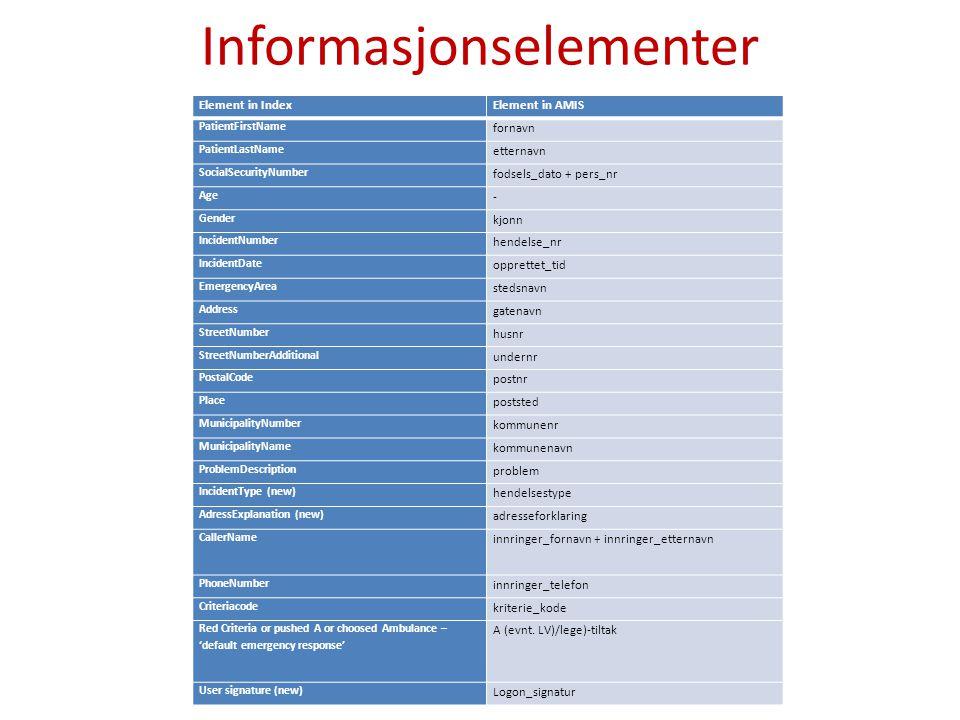 Informasjonselementer