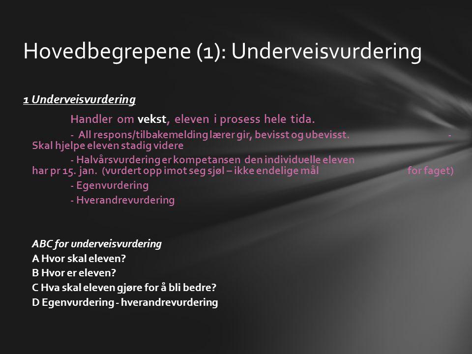 Hovedbegrepene (1): Underveisvurdering