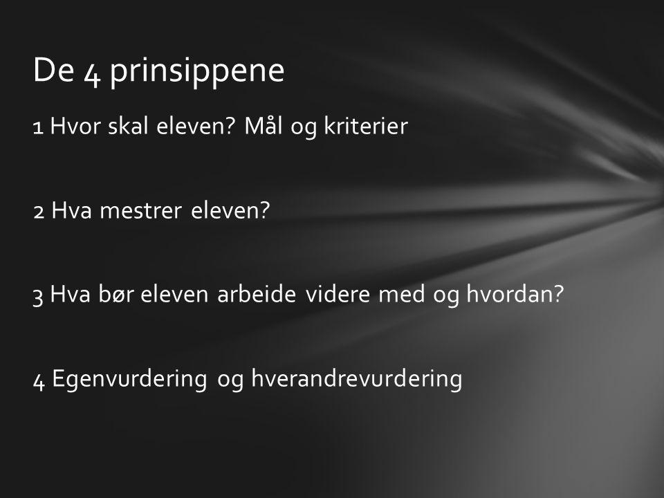 De 4 prinsippene