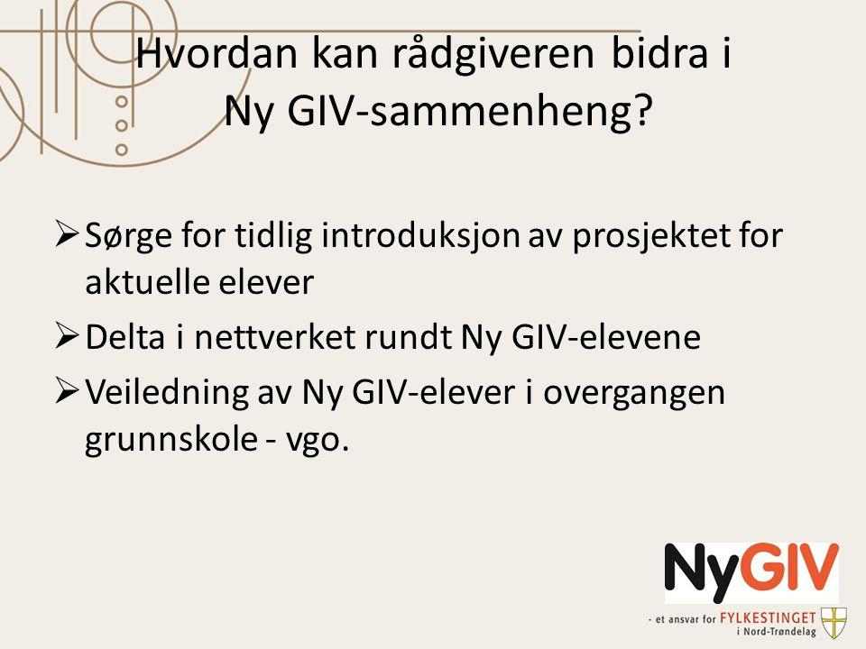 Hvordan kan rådgiveren bidra i Ny GIV-sammenheng