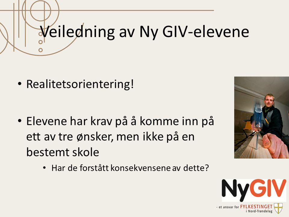 Veiledning av Ny GIV-elevene