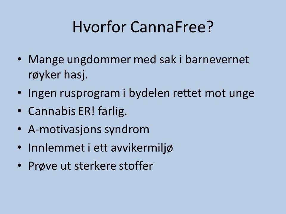Hvorfor CannaFree Mange ungdommer med sak i barnevernet røyker hasj.