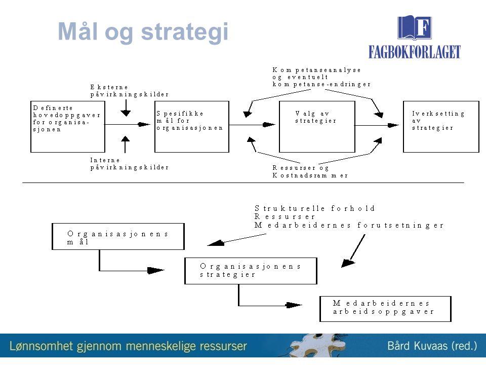 Mål og strategi