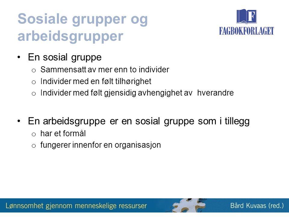 Sosiale grupper og arbeidsgrupper