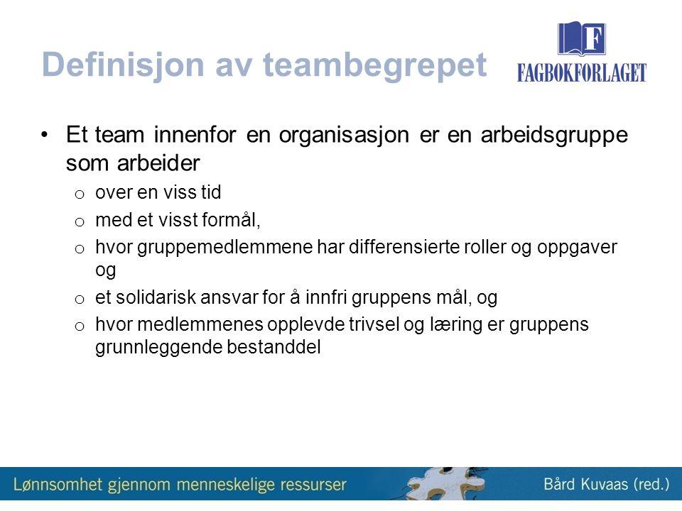 Definisjon av teambegrepet