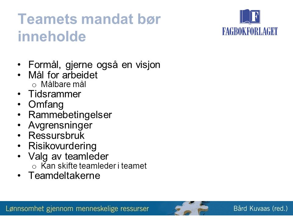Teamets mandat bør inneholde