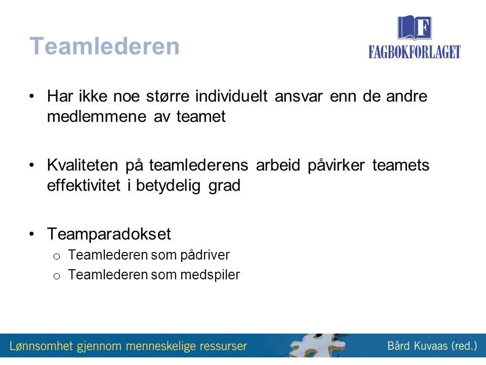 Teamlederen Har ikke noe større individuelt ansvar enn de andre medlemmene av teamet.