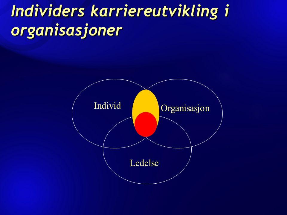Individers karriereutvikling i organisasjoner