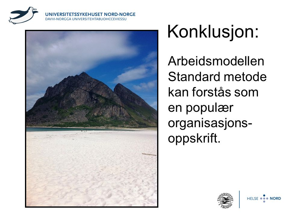 Konklusjon: Arbeidsmodellen Standard metode kan forstås som en populær organisasjons-oppskrift.