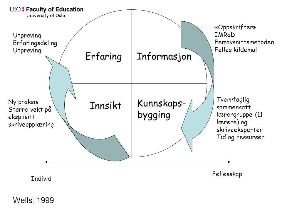 Erfaring Informasjon Kunnskaps-bygging Innsikt Wells, 1999