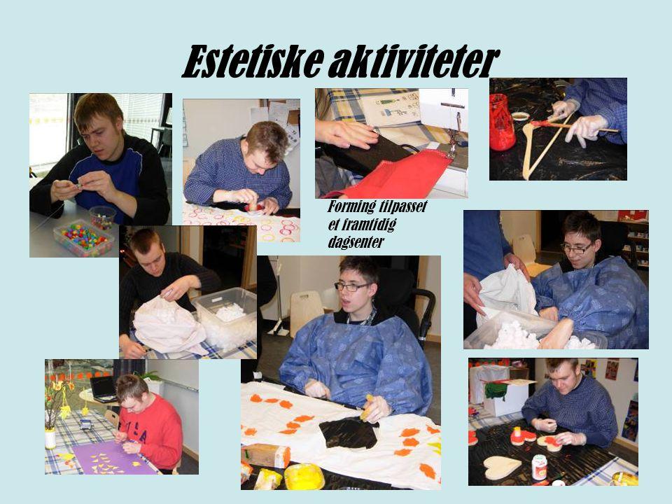 Estetiske aktiviteter