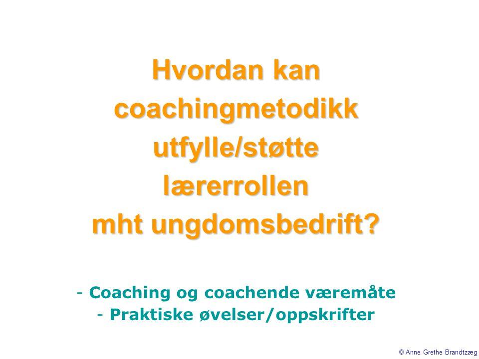 Hvordan kan coachingmetodikk utfylle/støtte