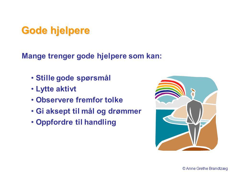 Gode hjelpere Mange trenger gode hjelpere som kan:
