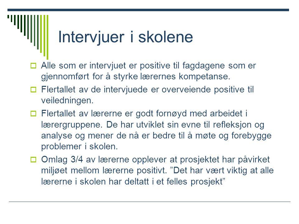 Intervjuer i skolene Alle som er intervjuet er positive til fagdagene som er gjennomført for å styrke lærernes kompetanse.