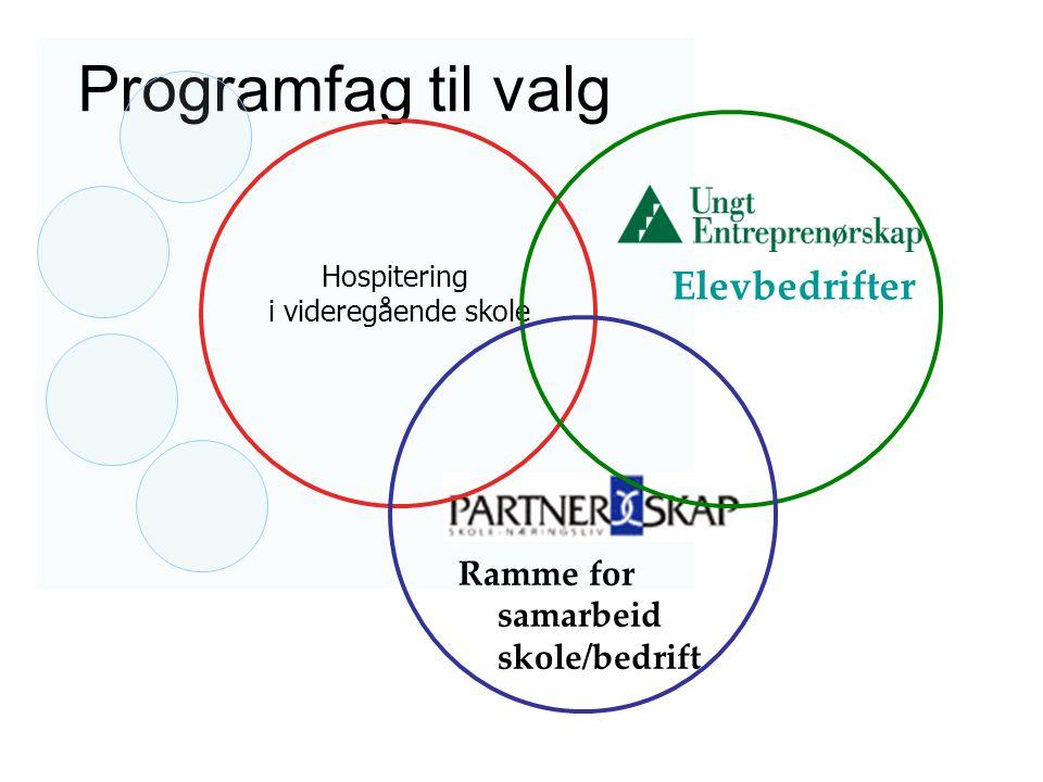 Programfag til valg Elevbedrifter Ramme for samarbeid skole/bedrift