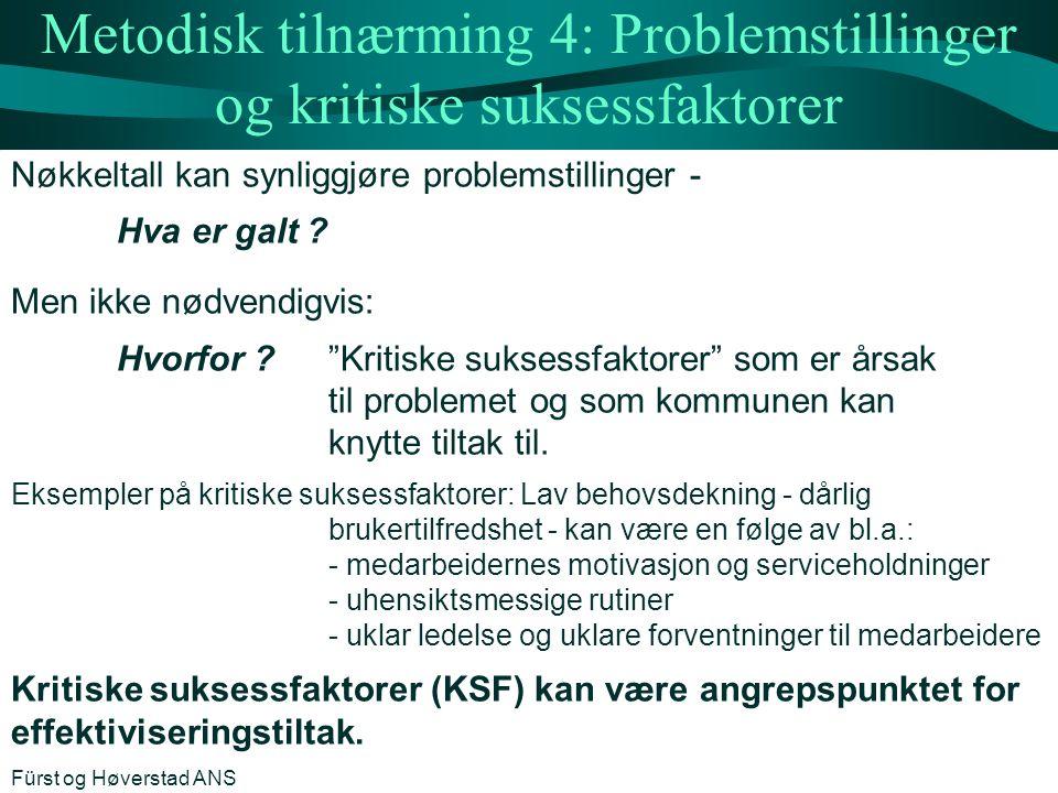 Metodisk tilnærming 4: Problemstillinger og kritiske suksessfaktorer