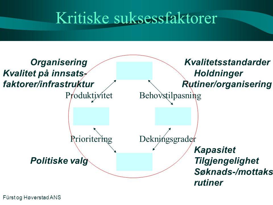 Kritiske suksessfaktorer