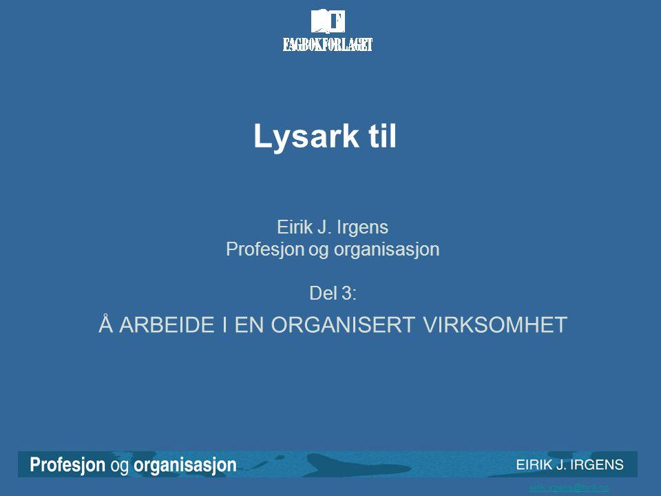 Lysark til Å ARBEIDE I EN ORGANISERT VIRKSOMHET Eirik J. Irgens
