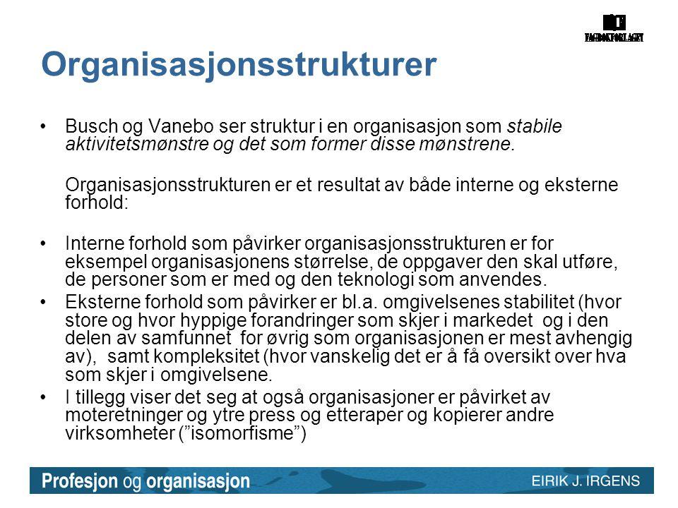 Organisasjonsstrukturer